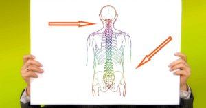 Scopri le relazioni tra i dolori della colonna vertebrale e viscere